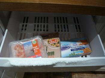 Freezer choices