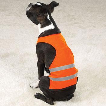 Dog Safety Orange Vest