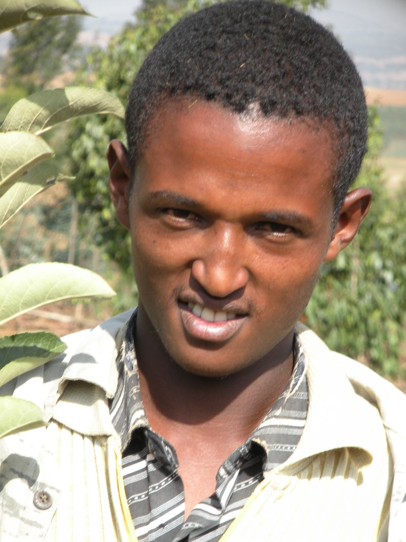 Abebe