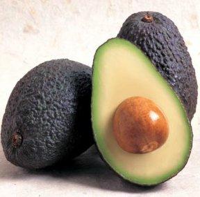 Caroline - Avocado
