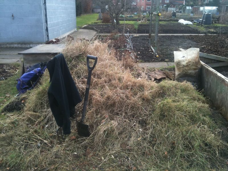 Couch grass mountain