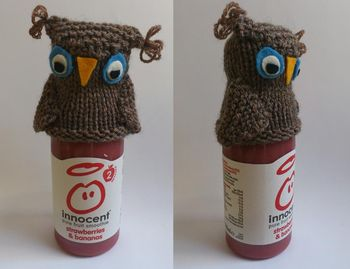 Owl x 2