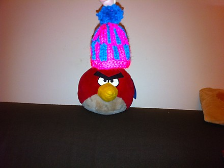 1 Karen Green's Angry Bird