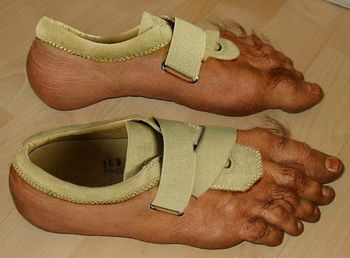 Foot Shoes