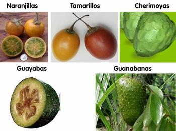 Promesa_fruit