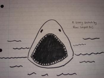 Shark_for_blog_003