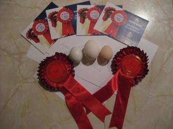 First_class_eggs
